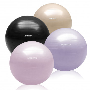 500kg Studio Anti-burst 65cm Gym Ball